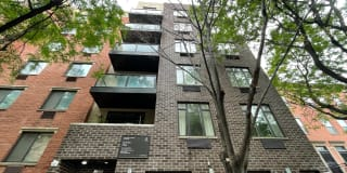 330 East 119th Street Photo Gallery 1