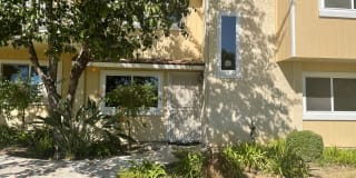 14939 Campus Park Drive #B Photo Gallery 1