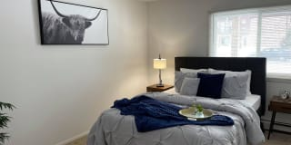 Springtree Apartments Photo Gallery 1