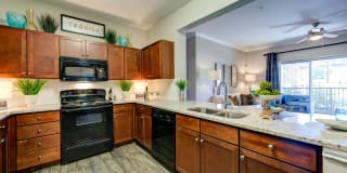 Callista Hill Country Apartments Photo Gallery 1