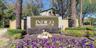Indigo West Photo Gallery 1