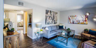 2900 Lux Apartment Homes Photo Gallery 1