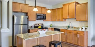 5 Central Apartments Photo Gallery 1