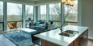 The Island Residences at Carlson Center Photo Gallery 1