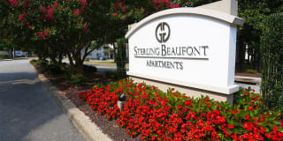 Sterling Beaufont Photo Gallery 1