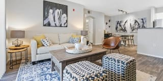 Ascent in Cottonwood Photo Gallery 1