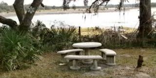 10288 Tooke Lake Boulevard Photo Gallery 1
