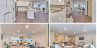 Vine Place Apartments Photo Gallery 1