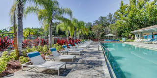Preserve at Westchase Photo Gallery 1