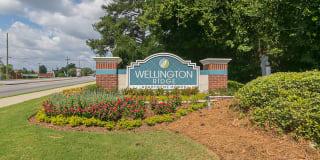 Wellington Ridge Photo Gallery 1