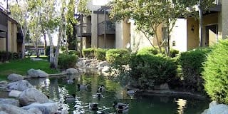 Casa Mediterrania Apartments Photo Gallery 1