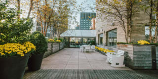 Murray Hill Tower Photo Gallery 1