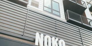 Noko Photo Gallery 1