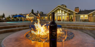 Vineyards at Valley View Photo Gallery 1