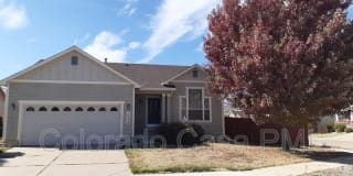 14238 Petrel Dr Photo Gallery 1