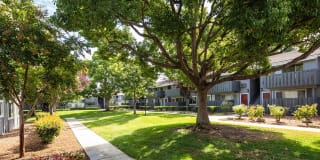 Cherrywood Apartments Photo Gallery 1