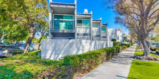 748 Olive Ave Photo Gallery 1