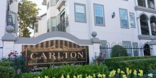 The Carlton Photo Gallery 1