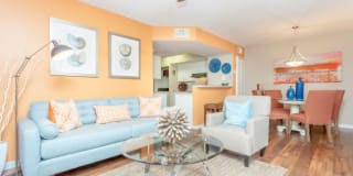 Palmetto Place Apartments Photo Gallery 1