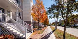 Island View Apartments Photo Gallery 1