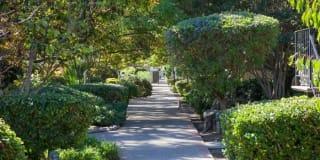 Los Gatos Gardens Photo Gallery 1