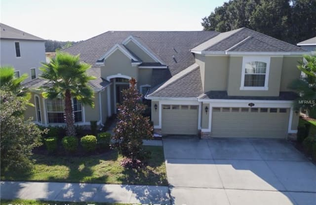 10533 Mistflower Lane - 10533 Mistflower Ln, Tampa, FL 33647