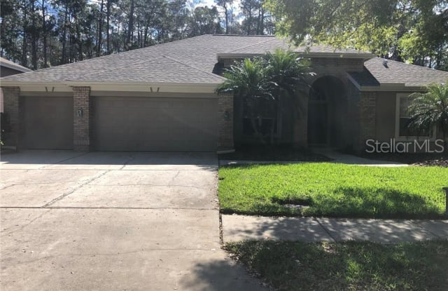 4739 WRENTHAM PLACE - 4739 Wrentham Place, East Lake, FL 34685