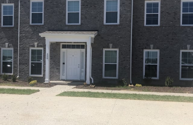 250 Grand Ave - 250 Grand Ave, Spring Hill, TN 37174