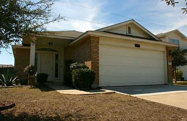 12809 James Madison St - 12809 James Madison Street, Travis County, TX 78653