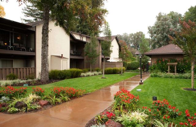 Danville Park - 218 Valley Creek Ln, Danville, CA 94526