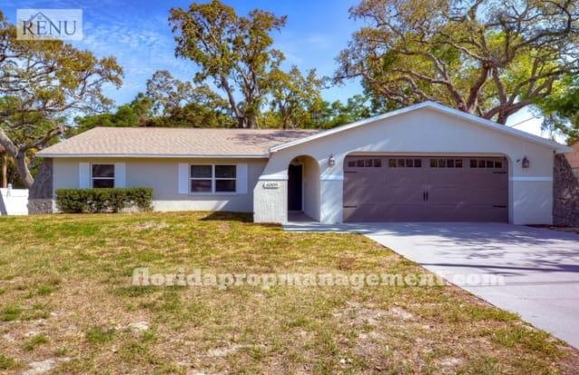 6009 Piedmont Drive - 6009 Piedmont Drive, Spring Hill, FL 34606