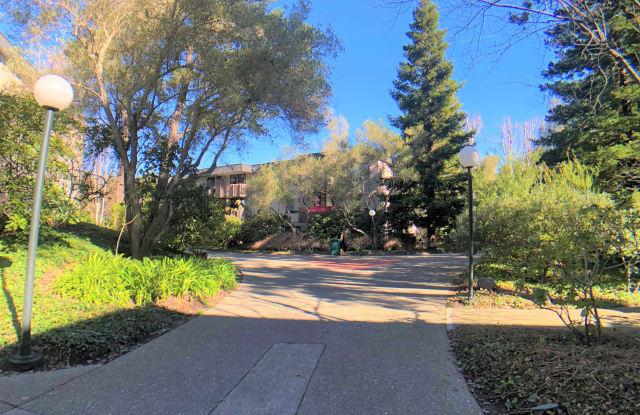 5332 Shelter Creek Lane - 5332 Shelter Creek Lane, San Bruno, CA 94066