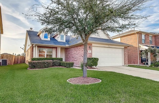 17726 Canyon Bloom - 17726 Canyon Bloom Lane, Fort Bend County, TX 77407