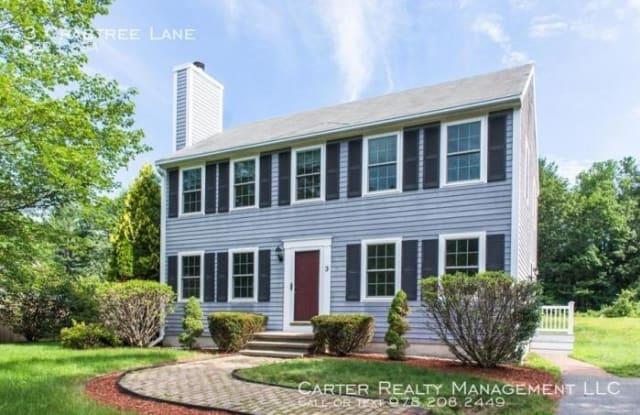 3 Crabtree Lane - 3 Crabtree Lane, Middlesex County, MA 01464