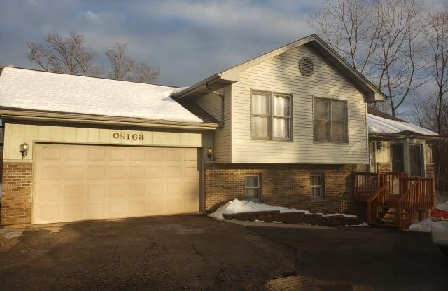163 South Neltnor Boulevard - 163 South Neltnor Boulevard, DuPage County, IL 60185
