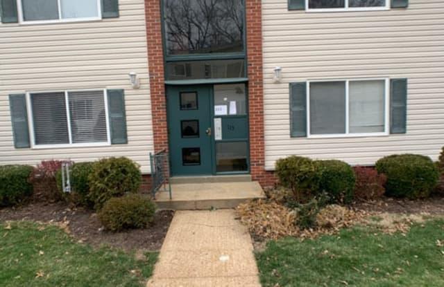 113 E Washington Ave Apt 2N - 113 East Washington Avenue, Kirkwood, MO 63122