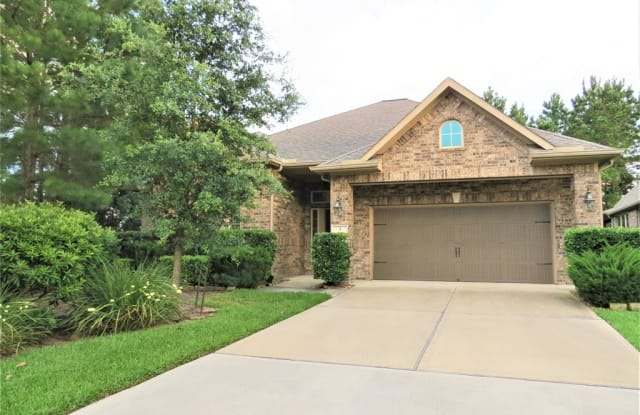 3 Jaspers Place - 3 Jaspers Pl, The Woodlands, TX 77389