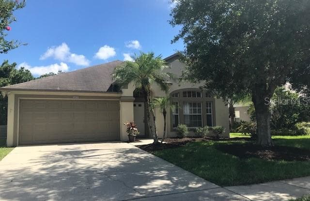 4940 RIDGEMOOR CIRCLE - 4940 Ridgemoor Circle, East Lake, FL 34685