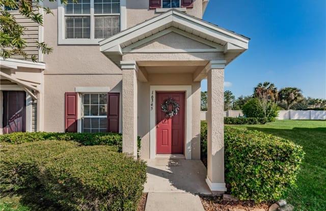 16345 SWAN VIEW CIRCLE - 16345 Swan View Circle, Odessa, FL 33556
