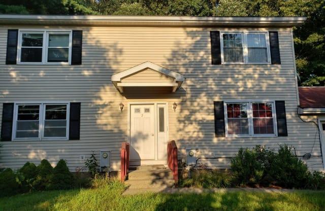 7 WOODRIDGE CIR - 7 Woodridge Circle, Saratoga County, NY 12065