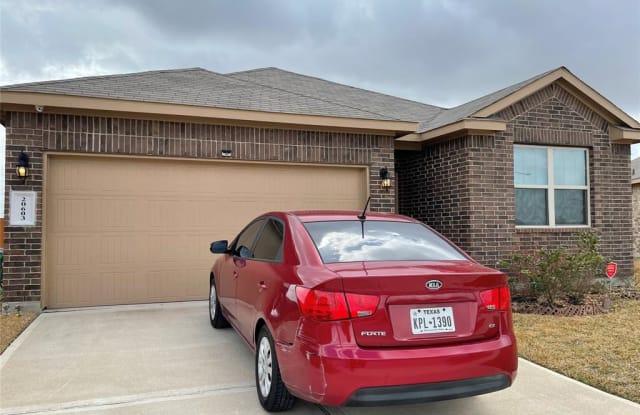 20603 Petunia Peak Street - 20603 Petunia Peak St, Harris County, TX 77449