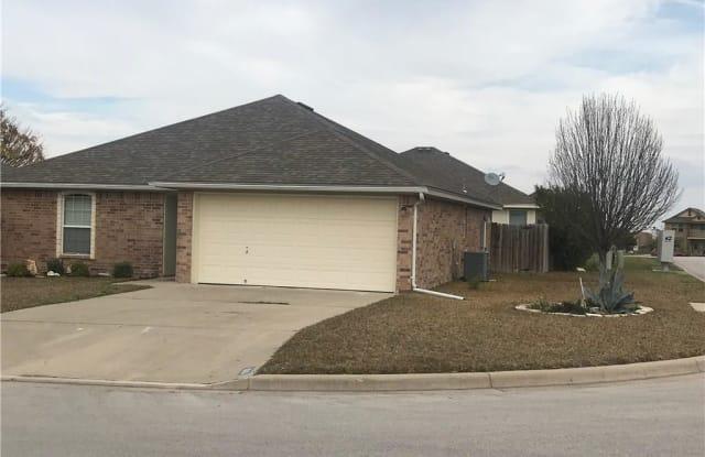 100 Calcite Lane - 100 Calcite Lane, Williamson County, TX 76537