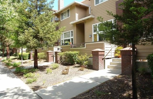 455 Mill River Ln - 455 Mill River Lane, San Jose, CA 95134