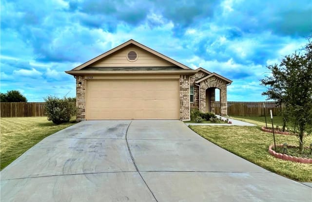 12308 Riprap DR - 12308 Riprap Drive, Manor, TX 78653