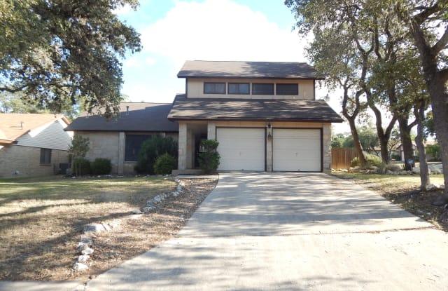 9203 Ridge Grove St - 9203 Ridge Grove Street, San Antonio, TX 78250