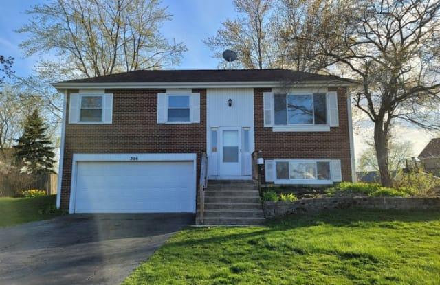 396 Woodhollow Lane - 396 Woodhollow Lane, Bartlett, IL 60103