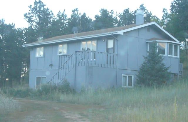 836 Sleepy Hollow Lower - 836 Sleepy Hollow Drive, Park County, CO 80421