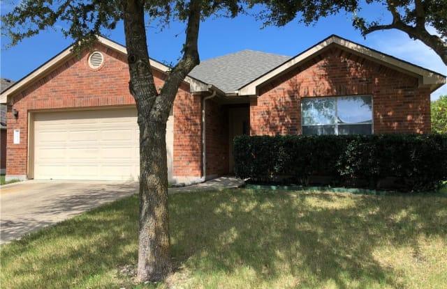 18621 Jana Patrice DR - 18621 Jana Patrice Drive, Pflugerville, TX 78660