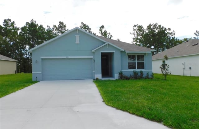 295 HICKORY COURSE RADIAL - 295 Hickory Road, Marion County, FL 34472