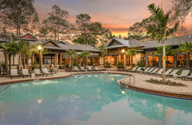 The Lodge at Hidden River - 14059 Riveredge Drive, Tampa, FL 33637